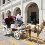Carriage ride from Plaza Grande to Lucas de Galvez Mercado 100 pesos