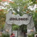 merida zoo 325