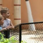 merida zoo 342