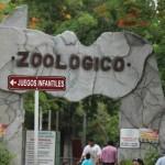 merida zoo 352