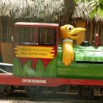 merida zoo 368